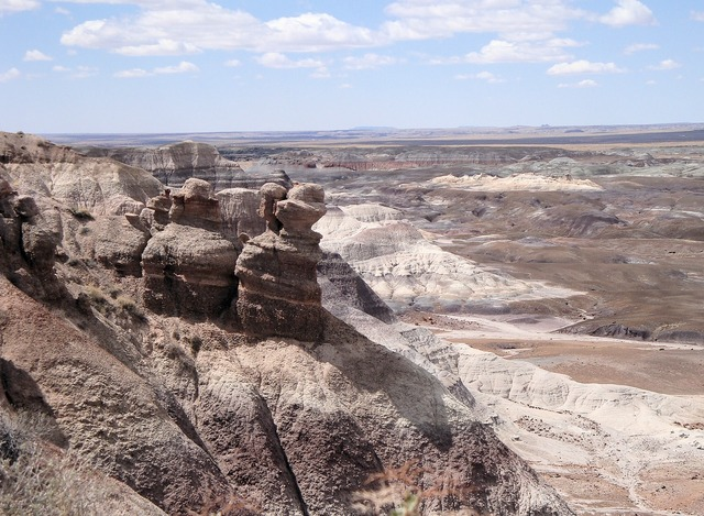 Petrified forest national park petrified fossils, nature landscapes.