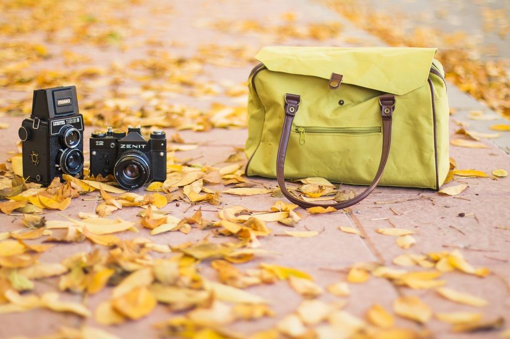 Photography vintage autumn.