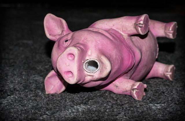 Piggy the pig toy, animals.