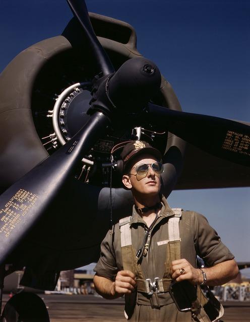 Pilot aircraft pilots flyer.