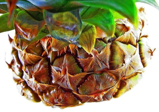 Pineapple fruit tropical fruits, food drink.