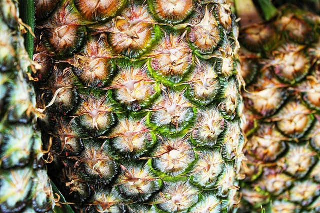 Pineapple texture macro, backgrounds textures.