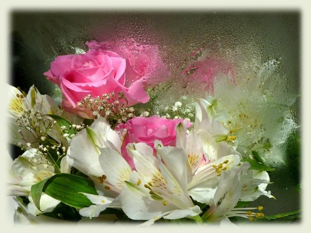 Pink roses alstroemeria princess lily.
