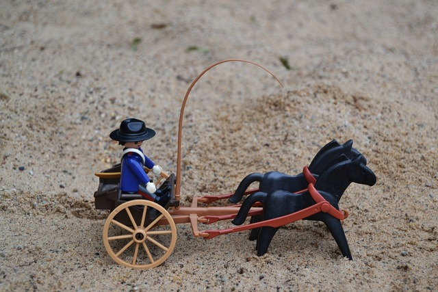 Playmobil western usa.