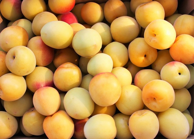Plum fruit june, food drink.