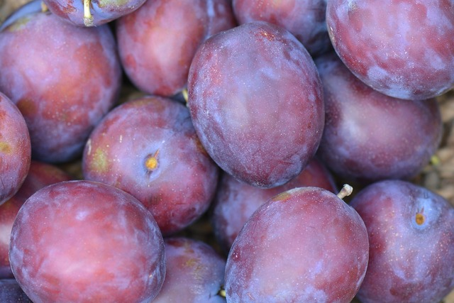 Plums fruit president plums, food drink.