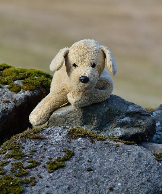 Plush dog stuffed animal teddy bear, animals.