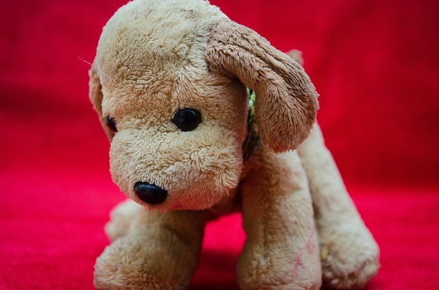 Plush toys puppy soft, animals.