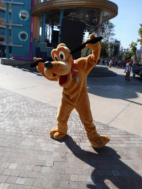 Pluto disneyland theme park.