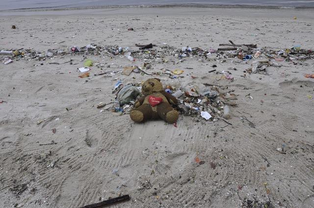 Pollution teddy bear beach, travel vacation.