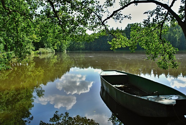 Pond water rowboat.