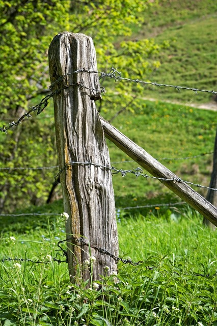 Post pasture fence fence.