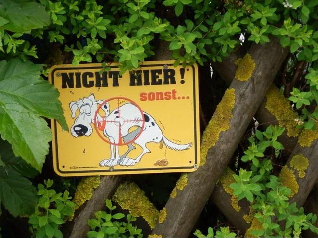 Prohibitory dog ban dog, animals.