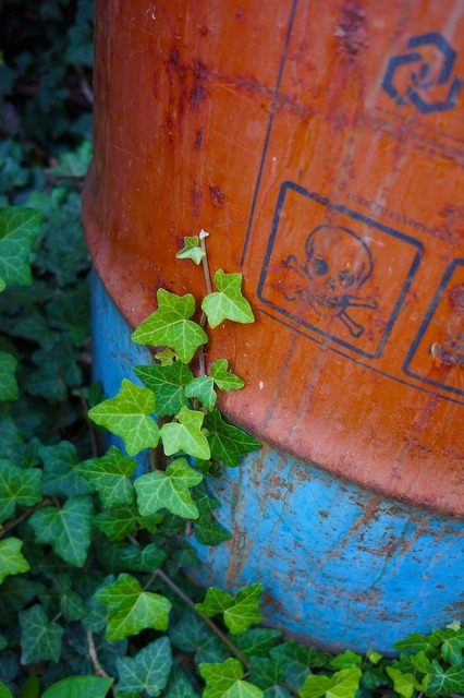 Protection of the environment barrel amber, nature landscapes.