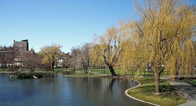 Public garden boston park, places monuments.