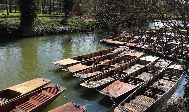 Punts punting oxford.