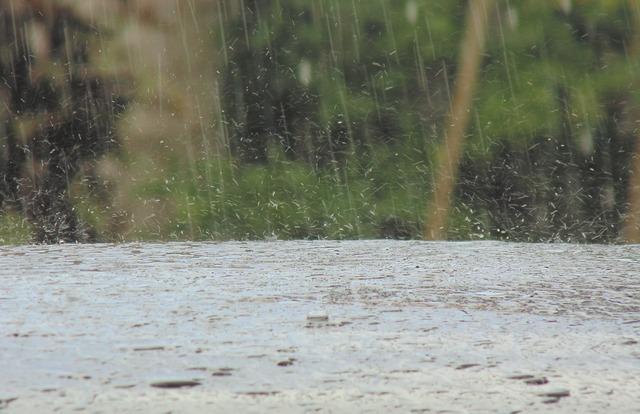 Rain focus photo.