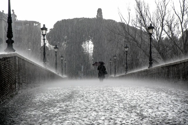 Rain wet drops.
