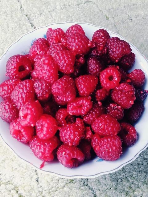 Raspberries fruit summer, food drink.