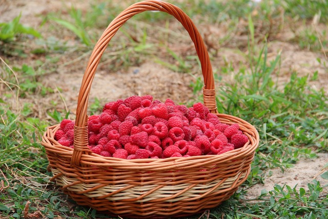 Raspberry basket berry, food drink.