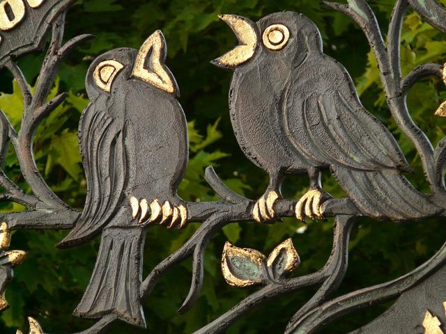Raven bird golden, animals.