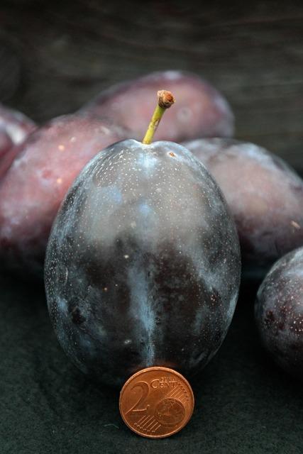 Real plum plum size comparison, food drink.