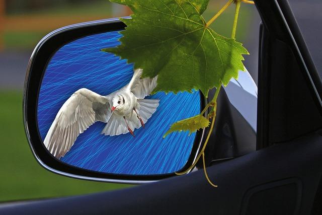 Rearview mirror car mirror car, transportation traffic.
