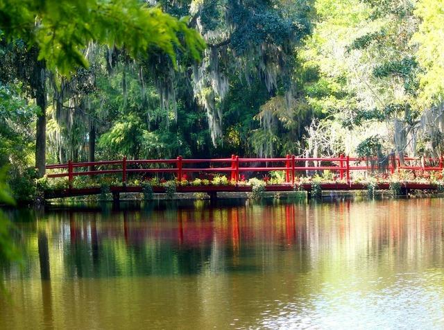 Red bridge spanish moss swamp.
