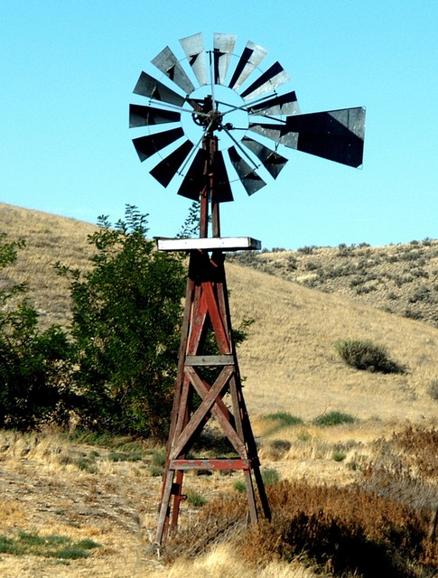 Renewable energy windmill ranching.