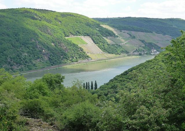 Rhine bank river.