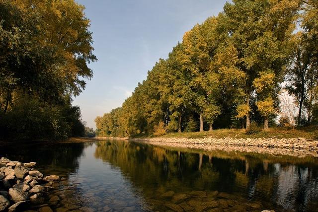 Rhine river channel.
