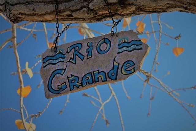 Rio grande sign river tree branch.