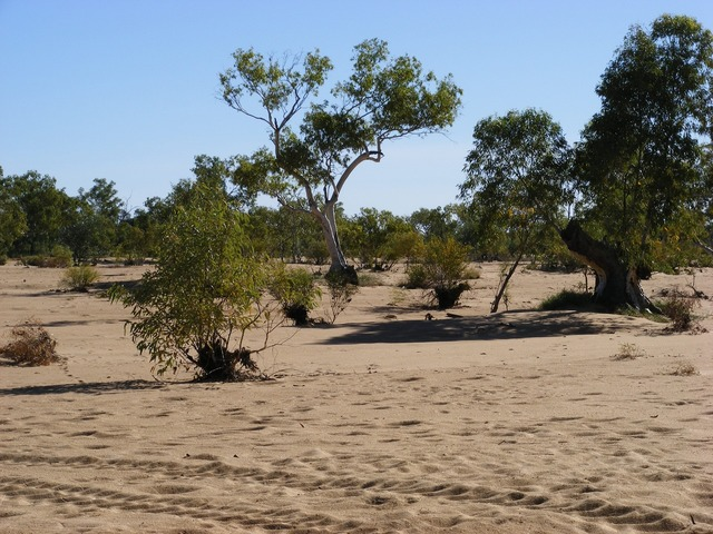 River bed central australia.
