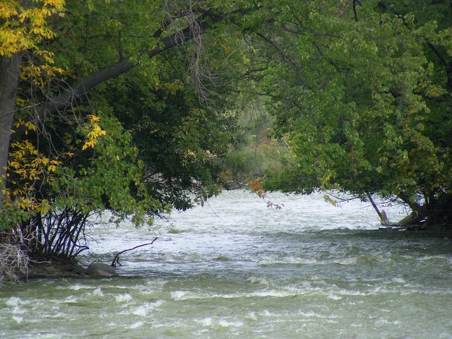 River fox river kaukauna.