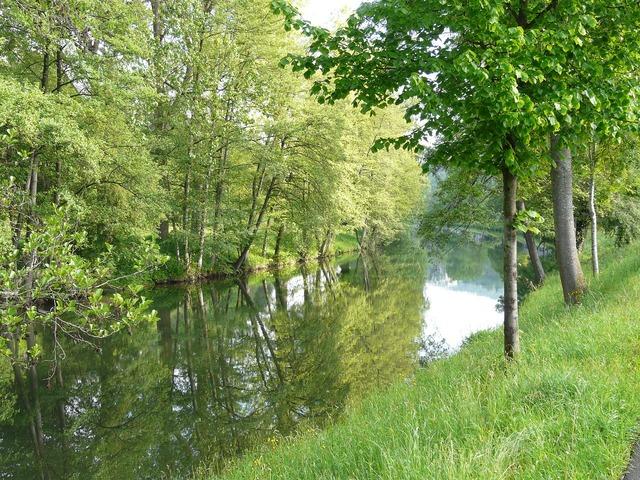 River idyll nagold.