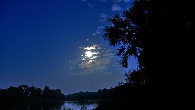 River moonlight summer.