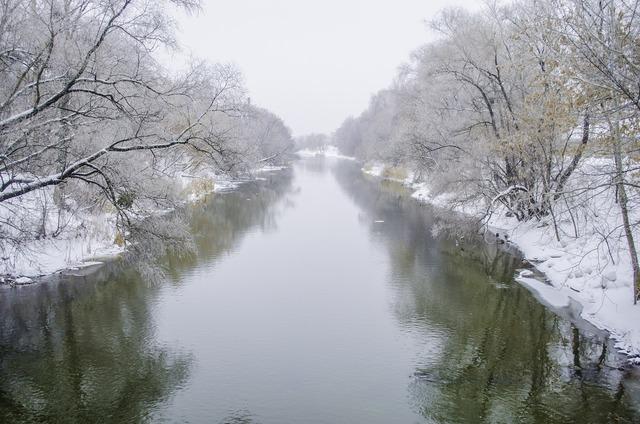 River shore fog.