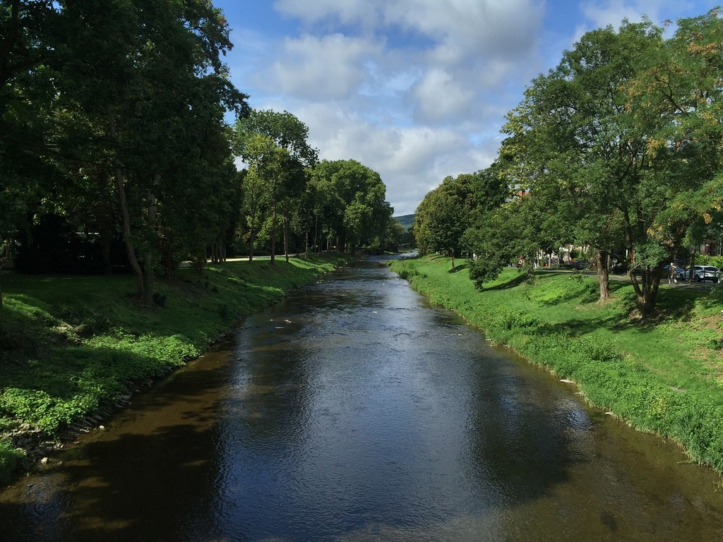 River trees nature, nature landscapes.