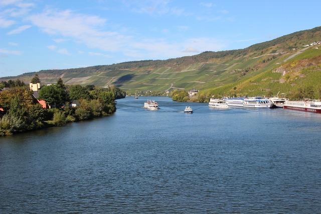 River vineyards mosel.