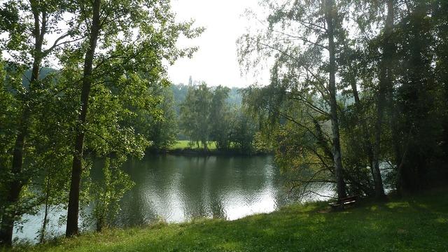 River water bank, nature landscapes.