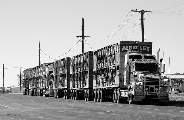 Road train semi transport, transportation traffic.