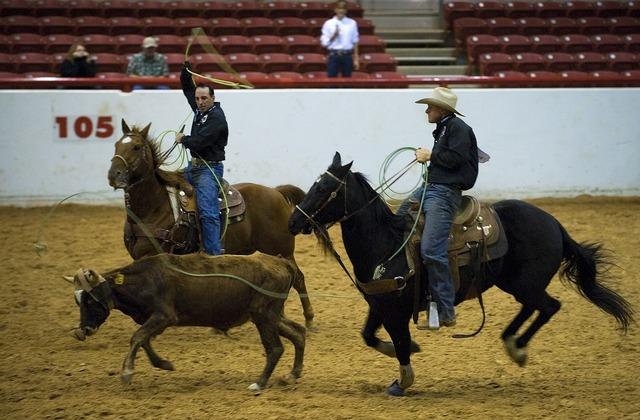 Rodeo calf roping, people.