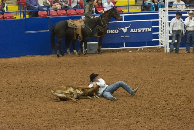 Rodeo steer wrestling competition, people.