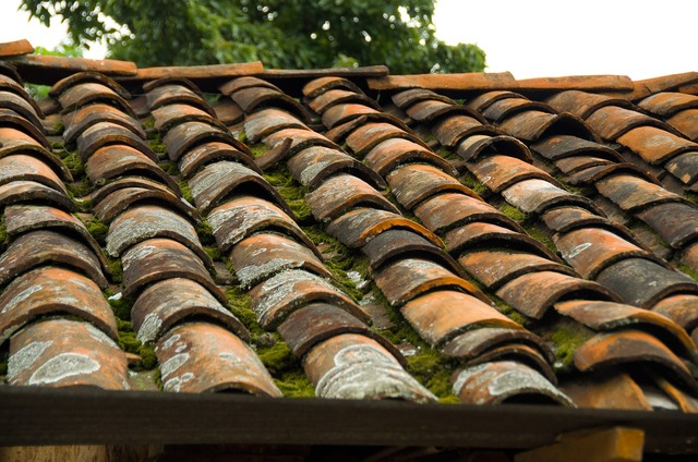 Roof tile rustic, architecture buildings.