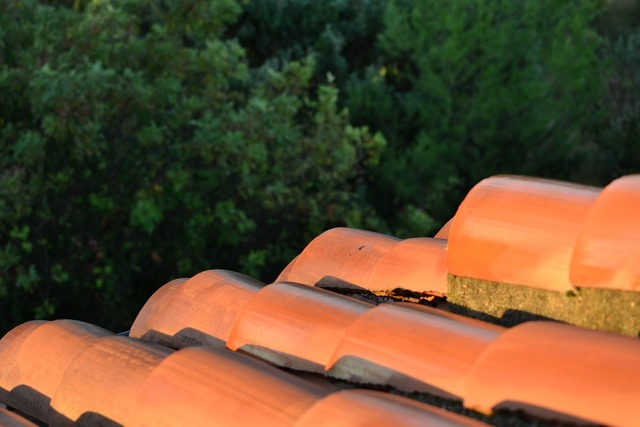 Roof tiles south tile.