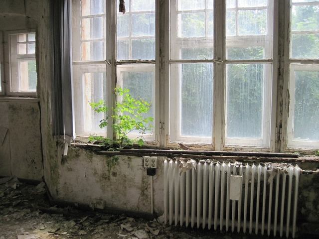 Room window heating, nature landscapes.