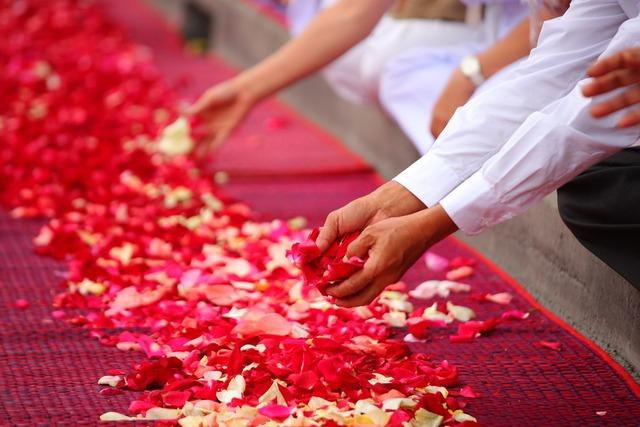 Rose petals buddhism people, religion.