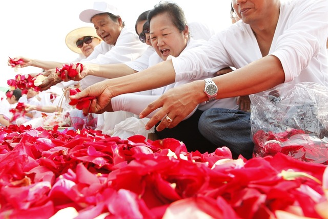 Rose petals thai thailand, religion.