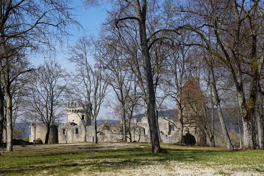 Ruin castle park.