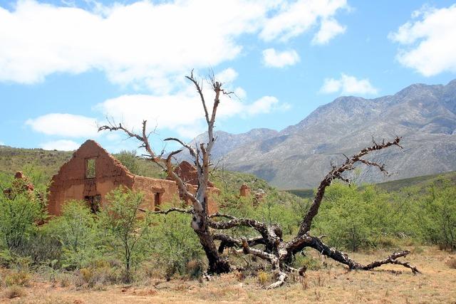 Ruin deadwood isolation, nature landscapes.